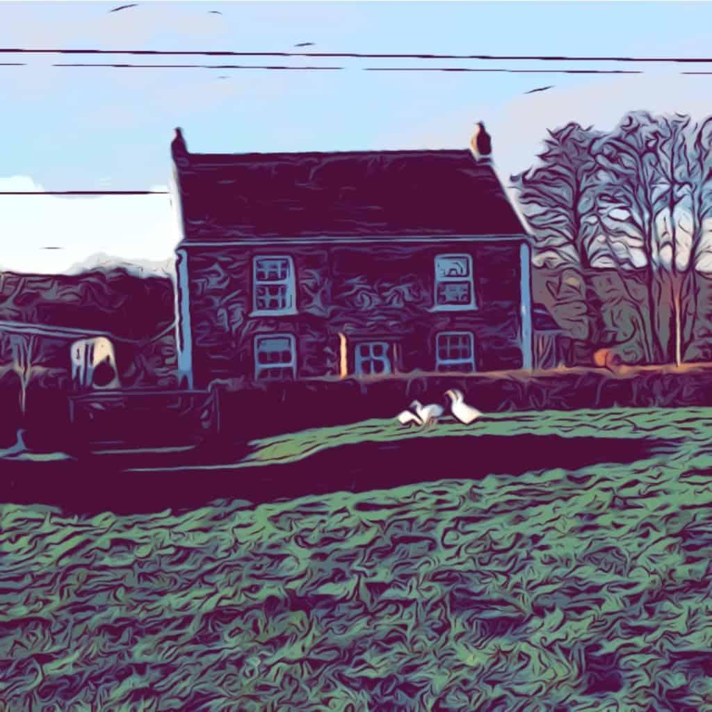 Chilcotts Farm - A Hobby Smallholding in North Devon